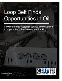 Loop Belt Industries Case Study
